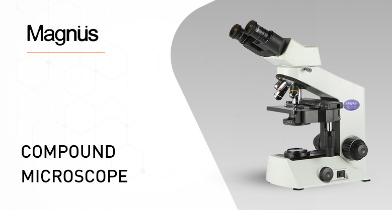 Compound Microscopes by Magnus